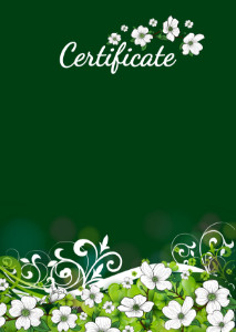 Certificate template «Summer holiday»